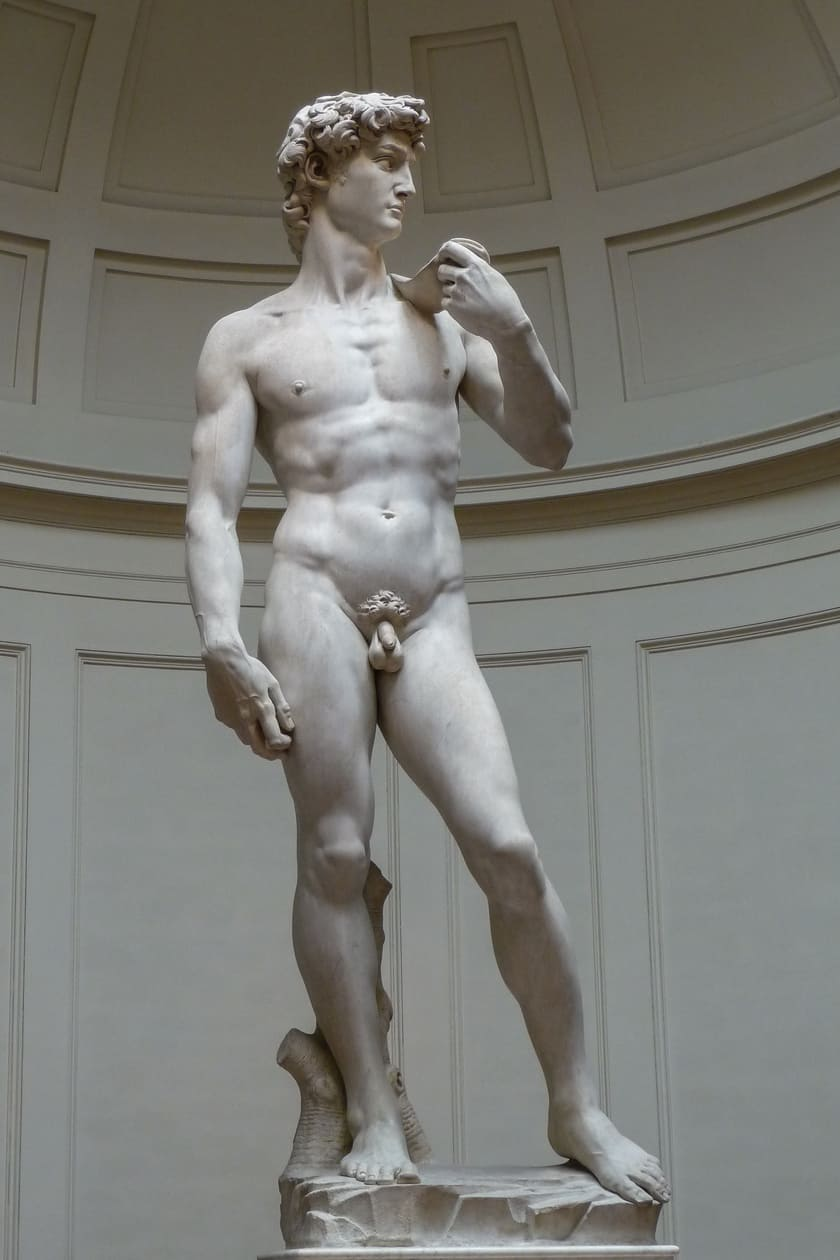 20160405_Image_VA EP66_David_Michelangelo